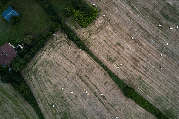 Riprese aeree agricole