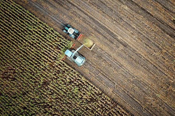 droni e agricoltura