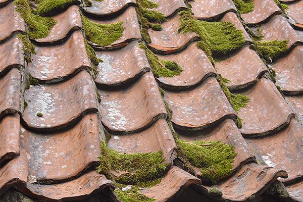 tetto deteriorato