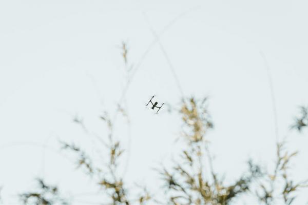 No droni spia