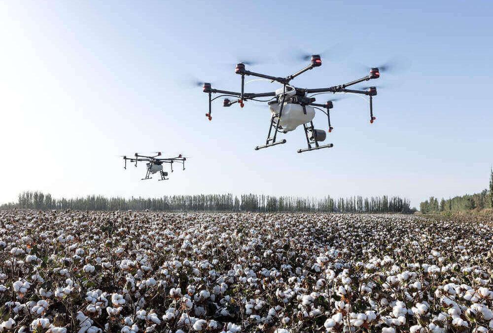 Servizio Drone Drone pro service