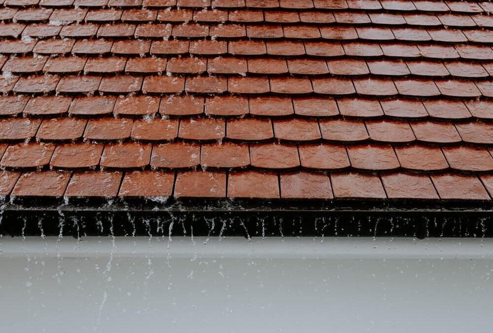Infiltrazioni acqua piovana dal tetto Drone Pro Service